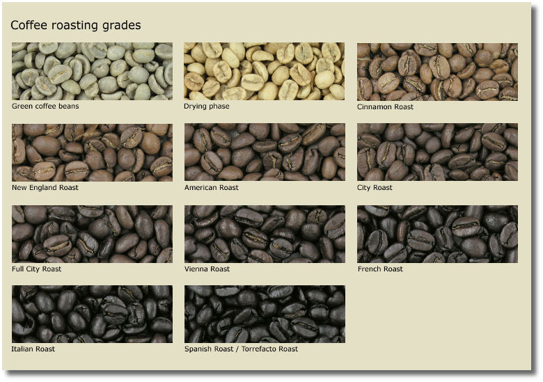 coffee-roasting-grades
